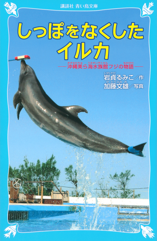 しっぽをなくしたイルカ 沖縄美ら海水族館フジの物語