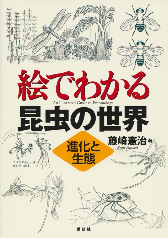 絵でわかる昆虫の生態と進化