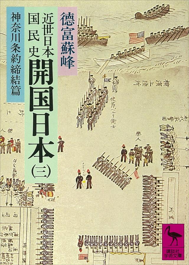 近世日本国民史 開国日本(3)