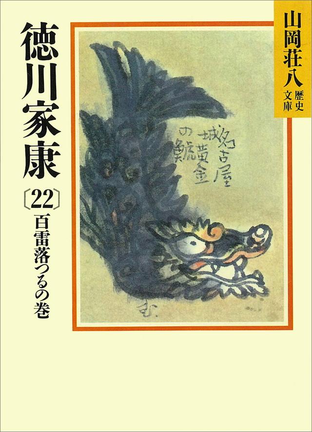 徳川家康(22)