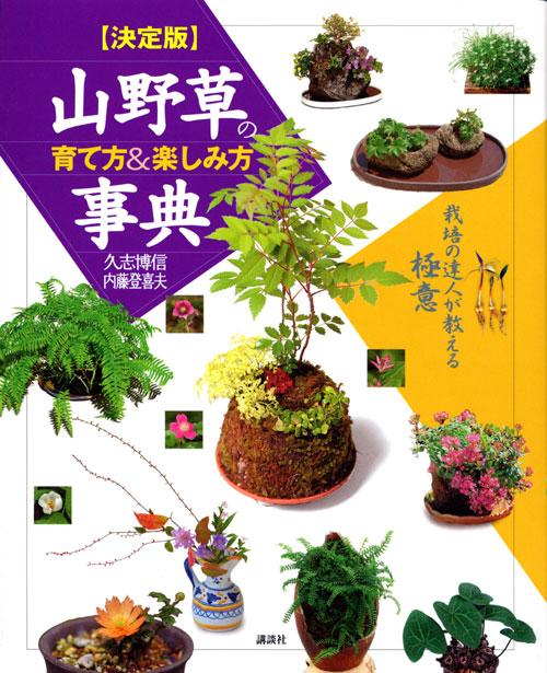 決定版 山野草の育て方&楽しみ方事典