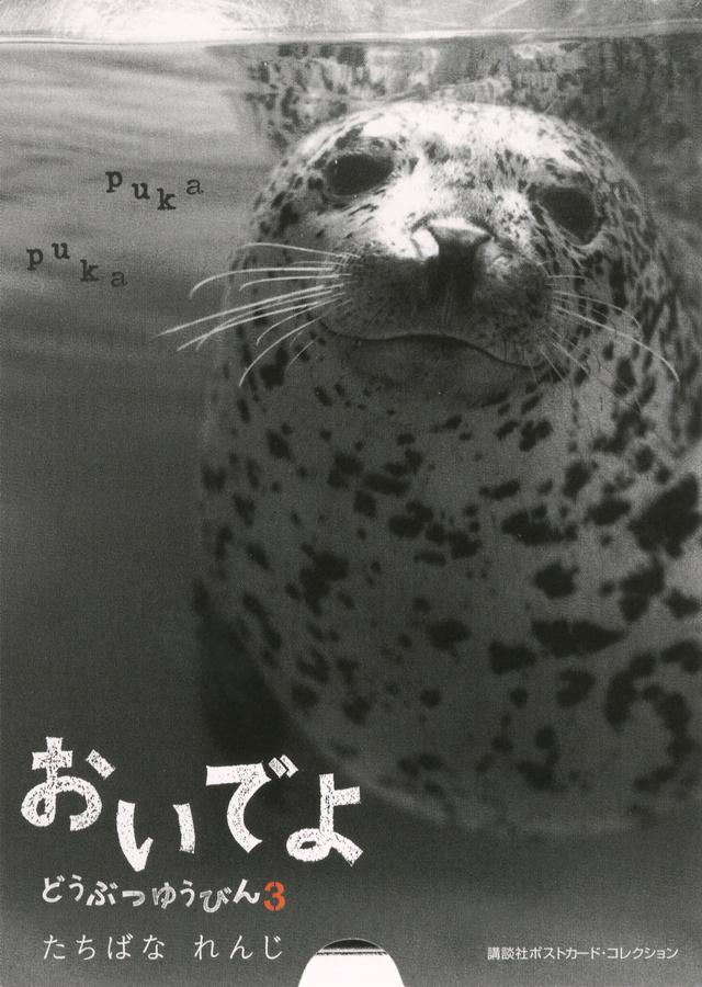 講談社ポストカード・コレクション