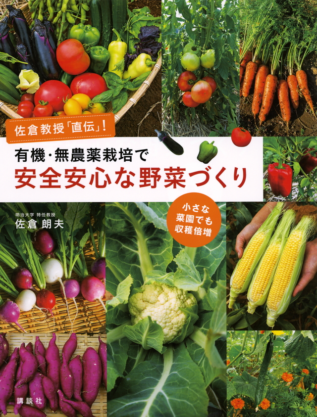 佐倉教授「直伝」!有機・無農薬栽培で安全安心な野菜づくり