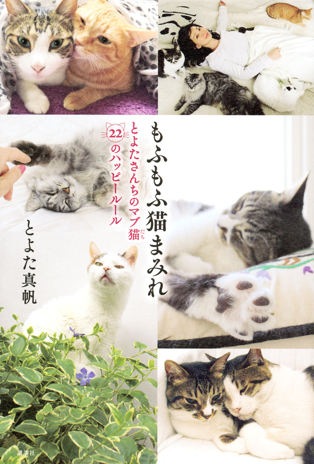 もふもふ猫まみれ とよたさんちのマブ猫 22のハッピールール