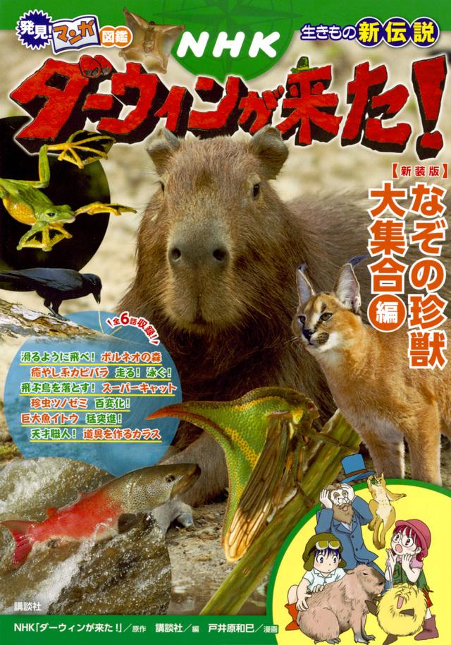 発見! マンガ図鑑 NHKダーウィンが来た! 新装版 なぞの珍獣大集合編