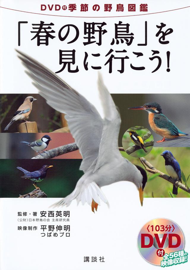 DVD付季節の野鳥図鑑「春の野鳥」を見に行こう!