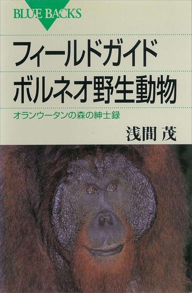 フィールドガイド ボルネオ野生動物