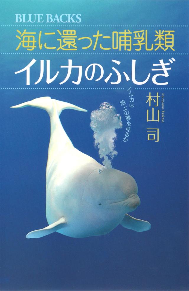 海に還った哺乳類 イルカのふしぎ