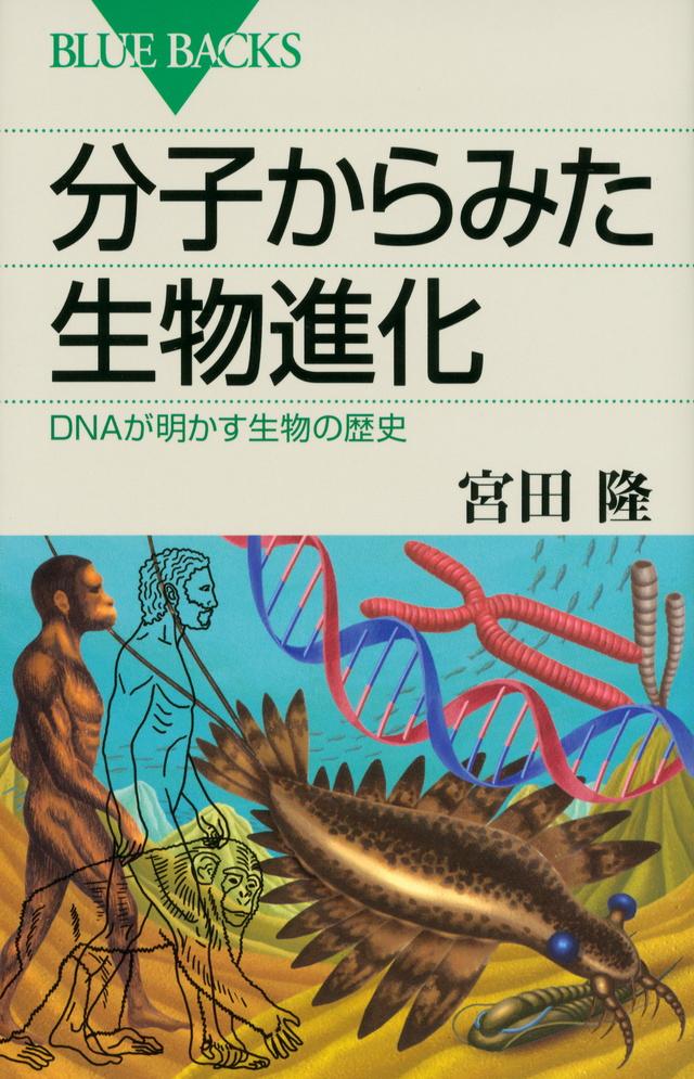 分子からみた生物進化 DNAが明かす生物の歴史
