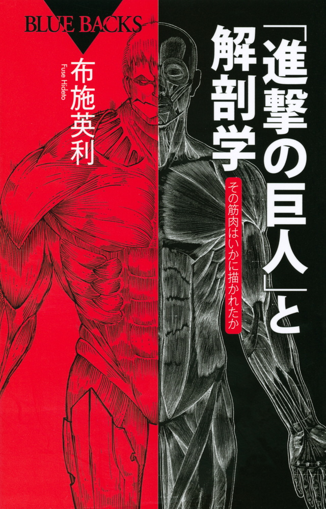 「進撃の巨人」と解剖学 その筋肉はいかに描かれたか