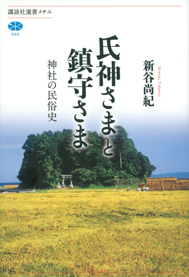 氏神さまと鎮守さま 神社の民俗史