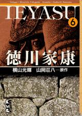 徳川家康(6)