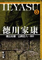 徳川家康(8)
