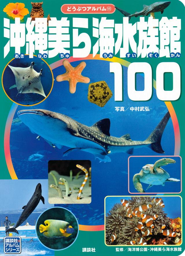 沖縄美ら海水族館100