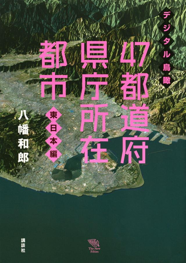 デジタル鳥瞰 47都道府県庁所在都市 東日本編
