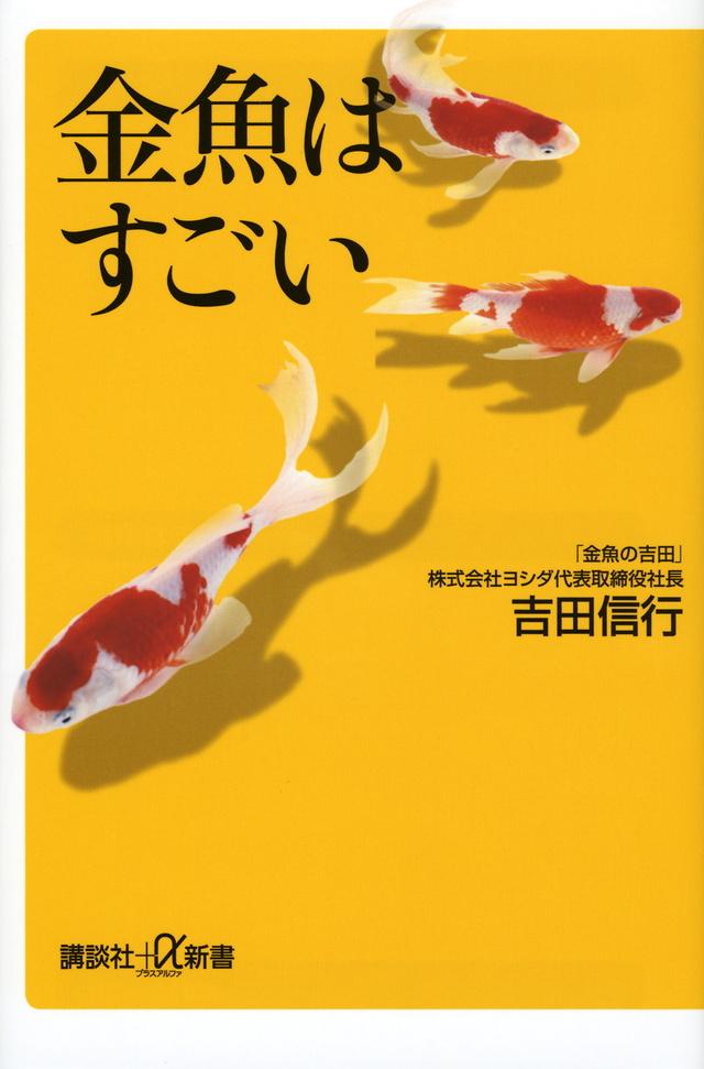 金魚はすごい