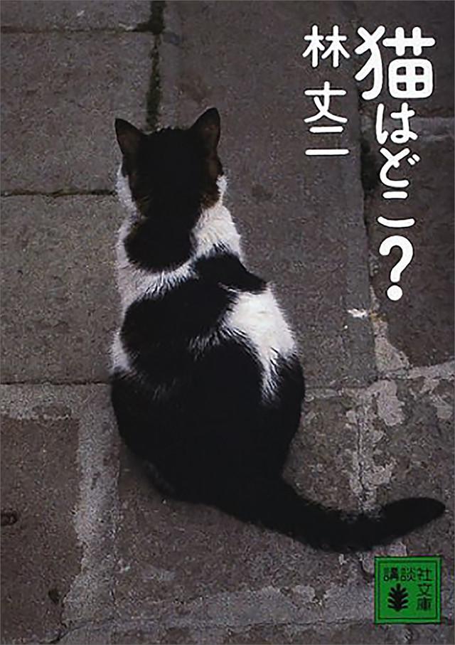 猫はどこ?