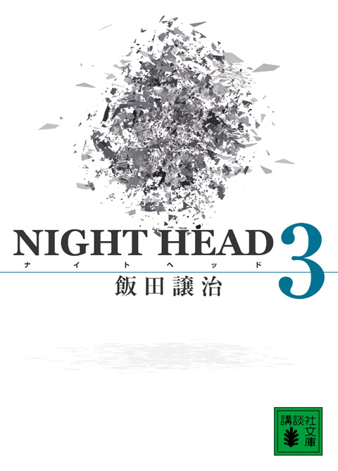 NIGHT HEAD(3)