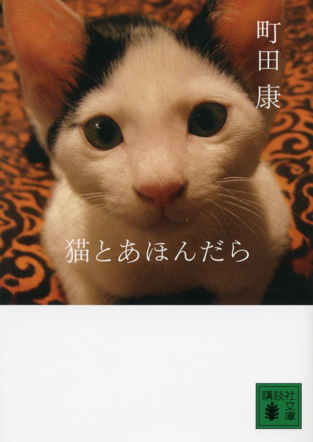 猫とあほんだら