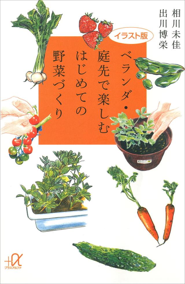 イラスト版 ベランダ・庭先で楽しむはじめての野菜づくり