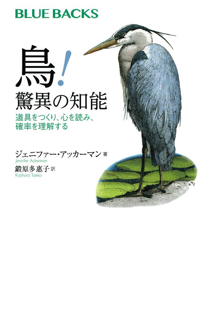 鳥! 驚異の知能