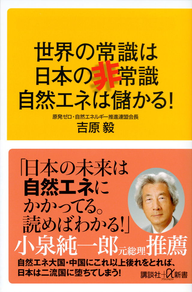 世界の常識は日本の非常識 自然エネは儲かる!