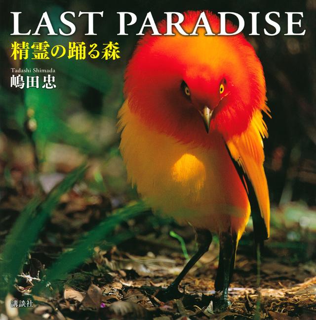 LAST PARADISE 精霊の踊る森