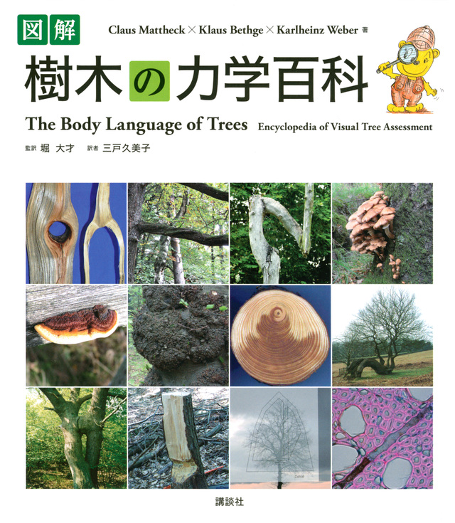 図解 樹木の力学百科