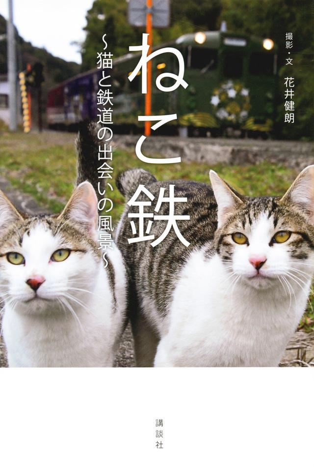 ねこ鉄 ~猫と鉄道の出会いの風景~