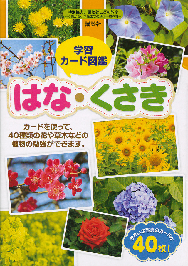 学習カード図鑑
