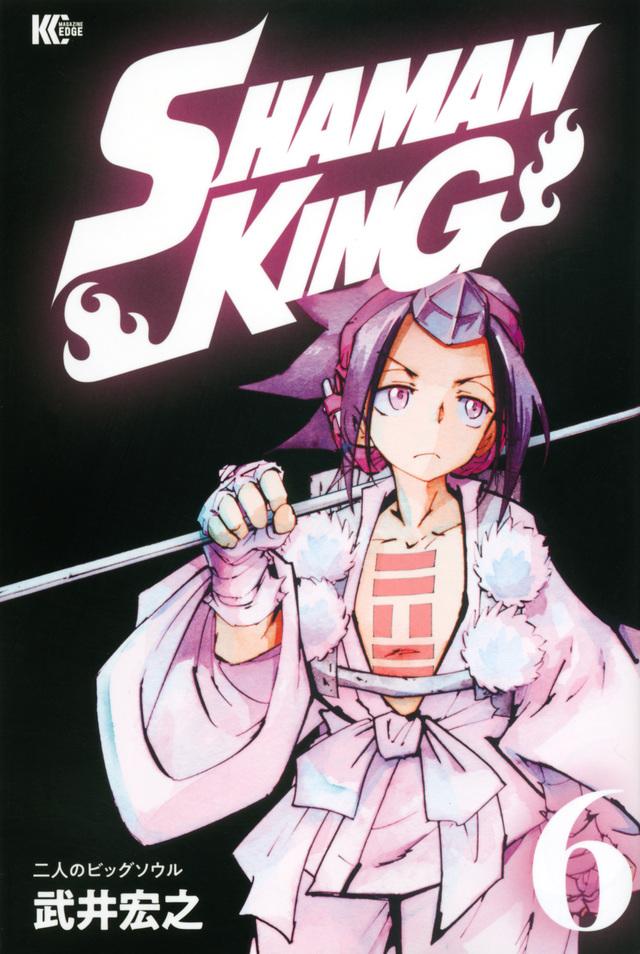 SHAMAN KING(6)