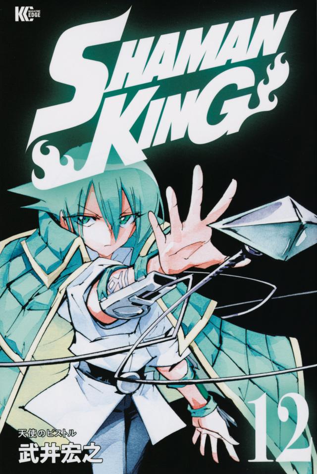 SHAMAN KING(12)
