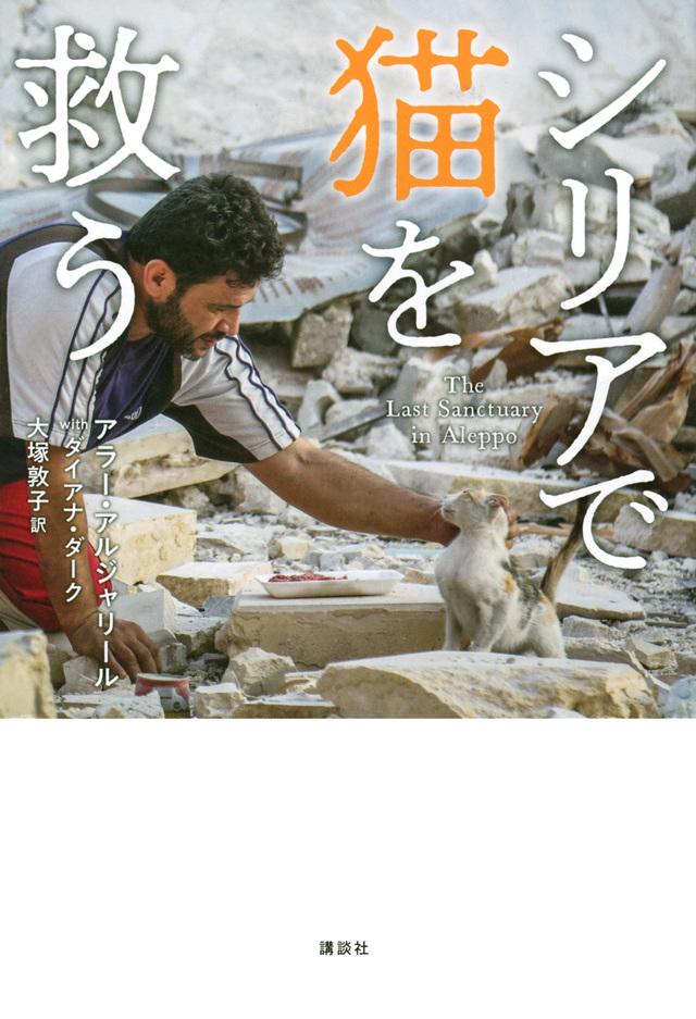 シリアで猫を救う