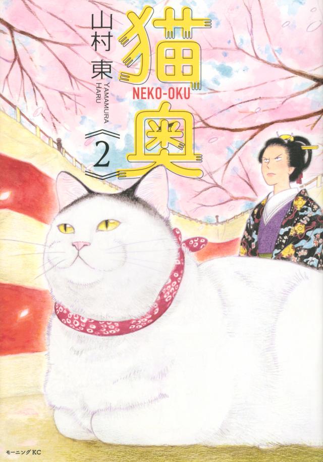 猫奥(2)